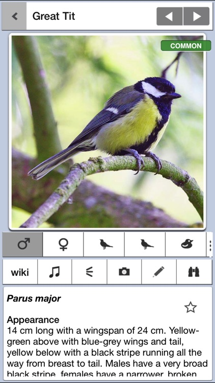 Birds of Britain Pro
