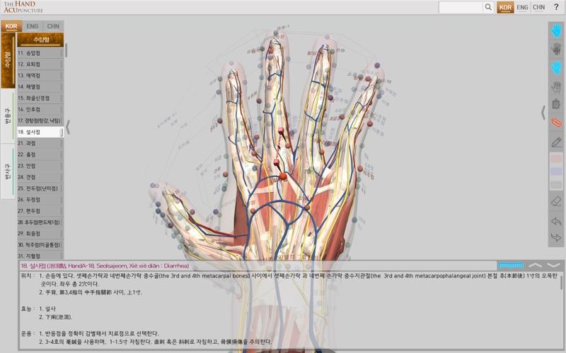 Hand Acupuncture скриншот программы 3