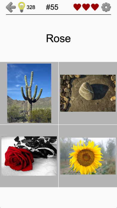 Easy Pictures - Fun Photo-Quiz screenshot 5
