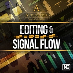 Editing and Signal Flow 107