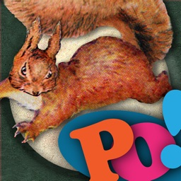 PopOut! The Tale of Squirrel Nutkin - Potter