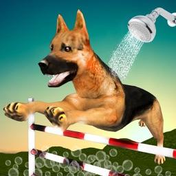 Dog Race & Stunts Wash Thru