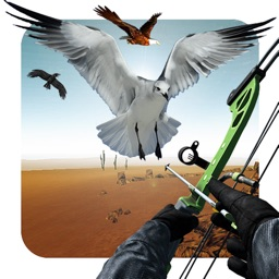 Flying Birds Hunting 2018 Game