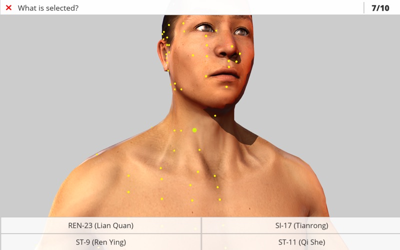 Visual Acupuncture 3D скриншот программы 5