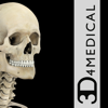 Skeleton System Pro III-iPhone-3D4Medical.com, LLC