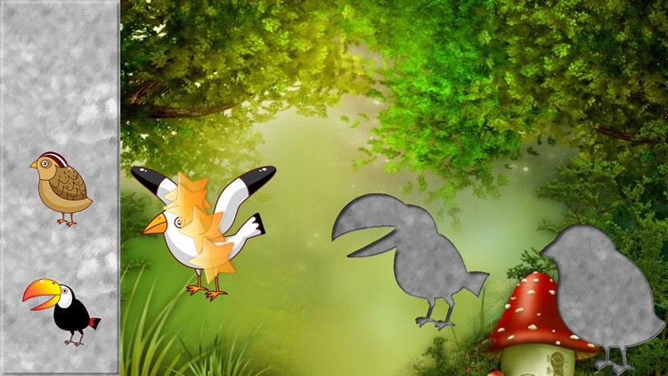 Birds Puzzles for Toddlers
