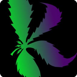 Kushy - Cannabis Directory, Dispensaries & Info