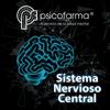 PLM Sistema Nervioso Central