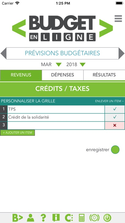 Budget en ligne screenshot-2