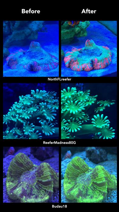 Aquarium Cameraのおすすめ画像4