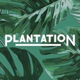 Plantation Coffee