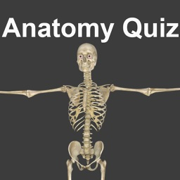 Anatomy Physiology Quiz and Glossary