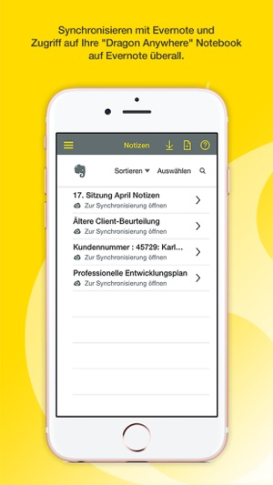 Dragon Anywhere im App Store
