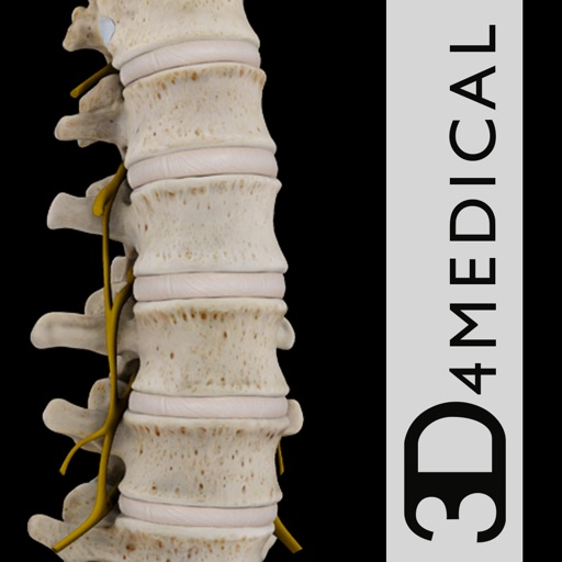 Spine Pro III