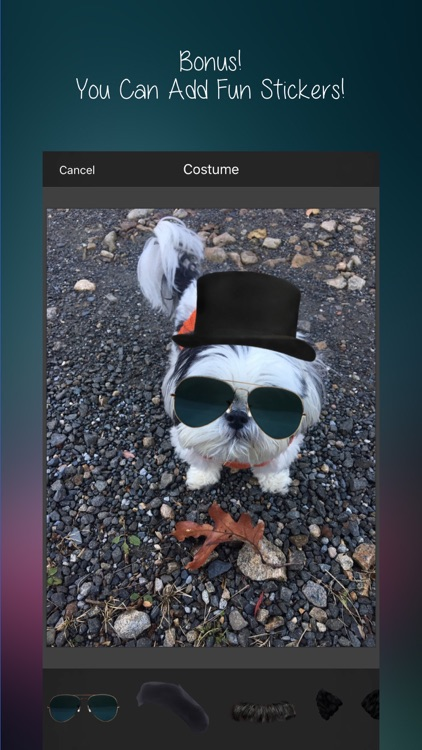 After Awesome : All-In-1 Picture Editor & More