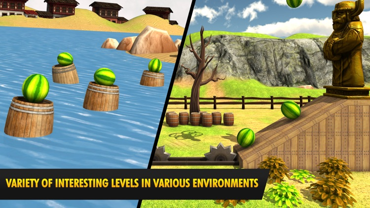Watermelon Shooting Game 3D screenshot-4