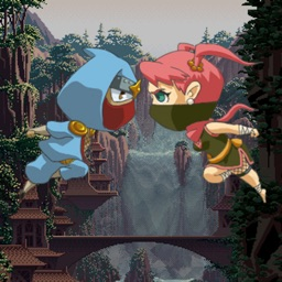 Waterfall Ninja