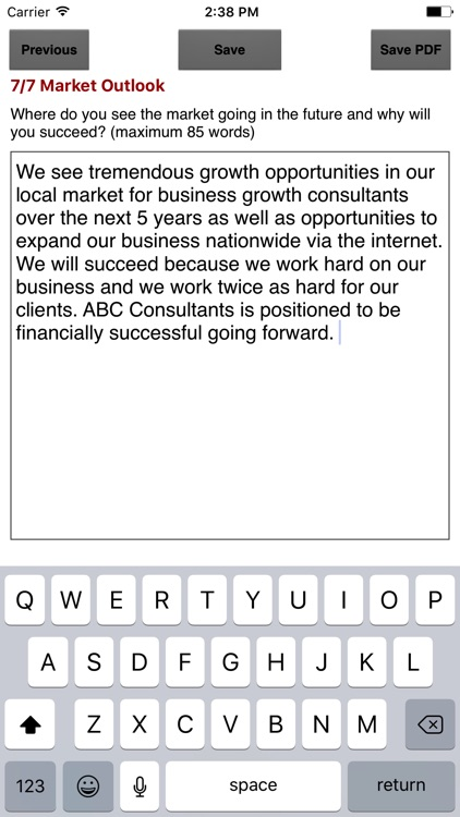 Marketing Plan Snapshot screenshot-2