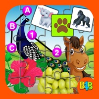 Codes for All In One Kids Puzzle Hack