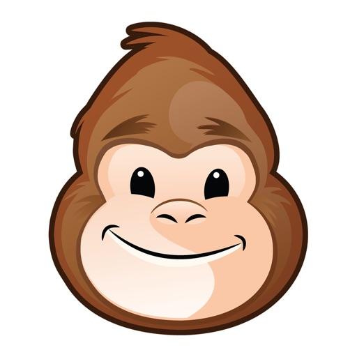 Health Gorilla