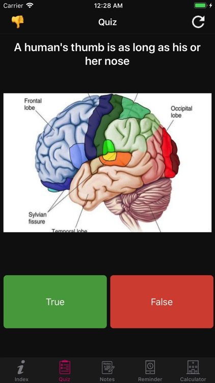 Human Brain Facts & Quiz 2000 screenshot-7