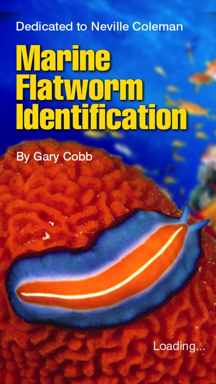 Marine Flatworms ID