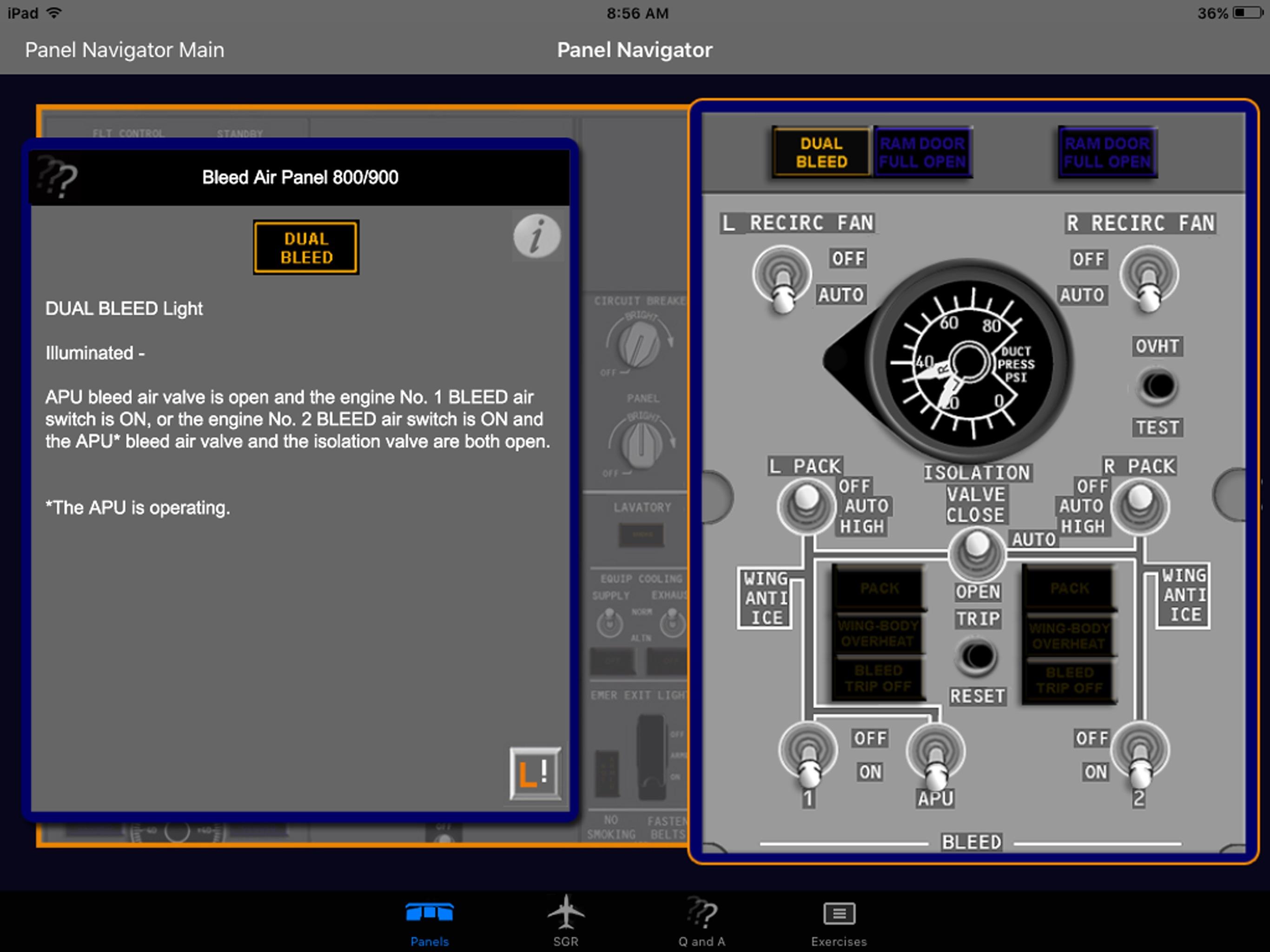 iB737NG Screenshot
