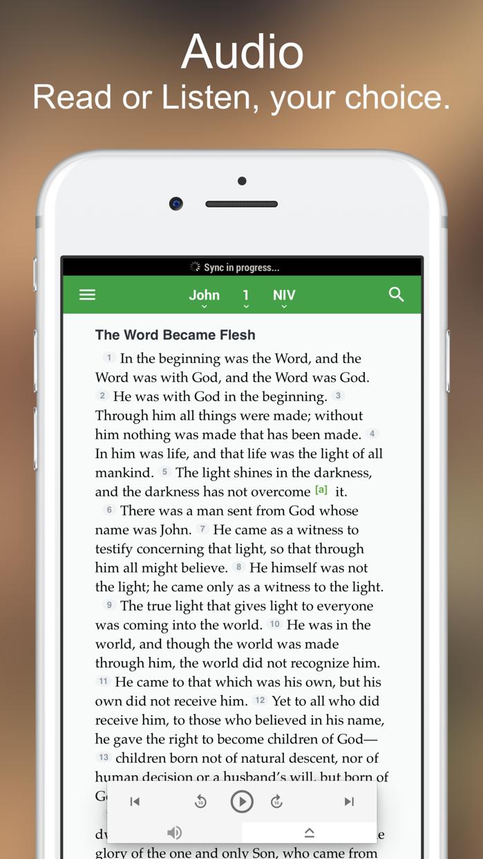 NIV Bible* Screenshot