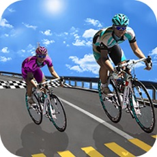 Activities of Real Bicycle Racing BMX