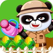熊猫老师植物种子花园