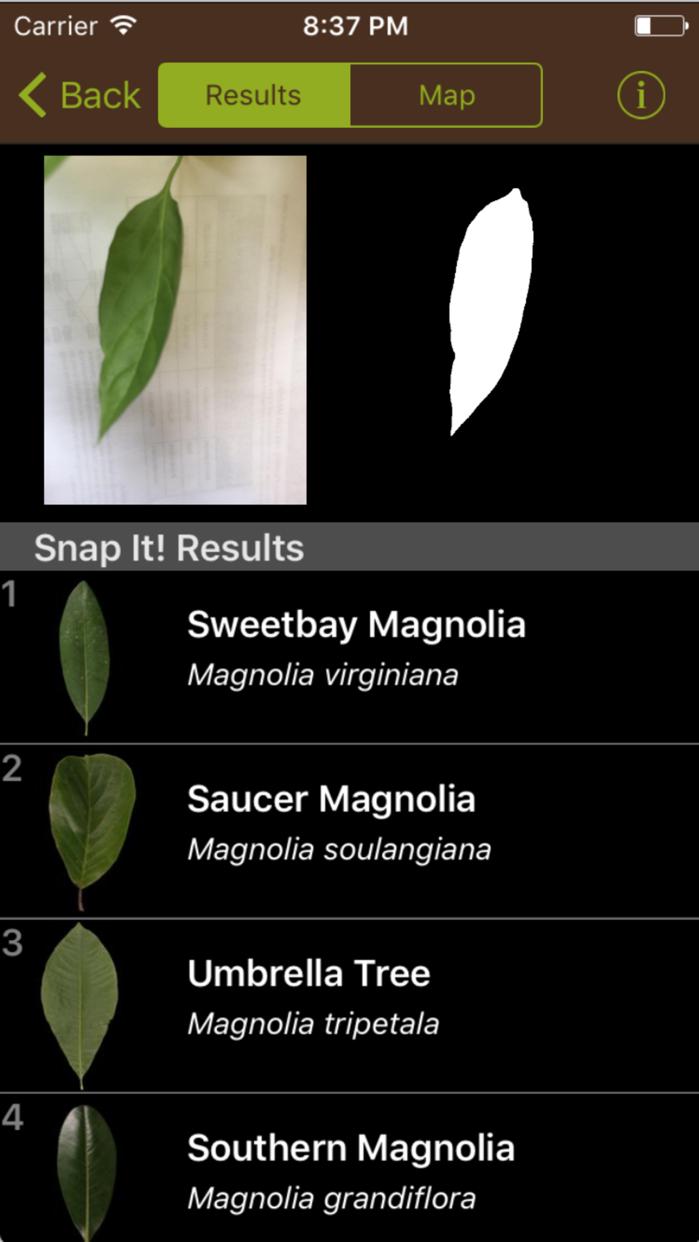 Leafsnap Screenshot