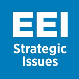 EEI Strategic Issues