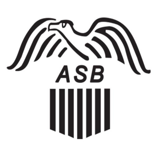 BaldEagle by American Savings