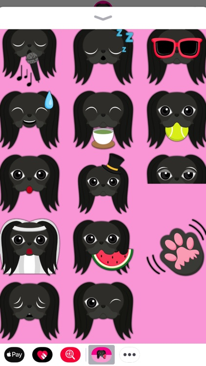 Black Japanese Chin screenshot-3