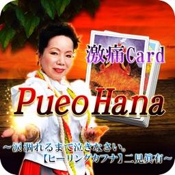 神島ハワイのパワー占い【占い師二見眞有】プエオハナカード占い