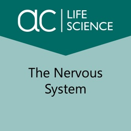 Exploring the Nervous System