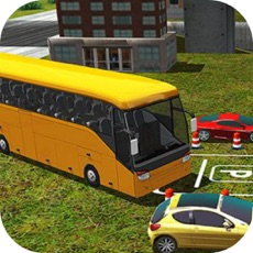 Activities of Public Bus Driving Skill