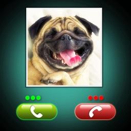 Fake Call Dog Prank