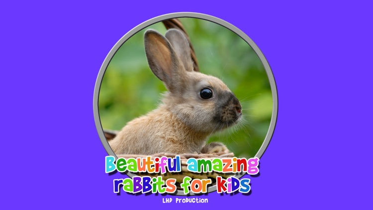 beautiful amazing rabbits for kids free screenshot-3