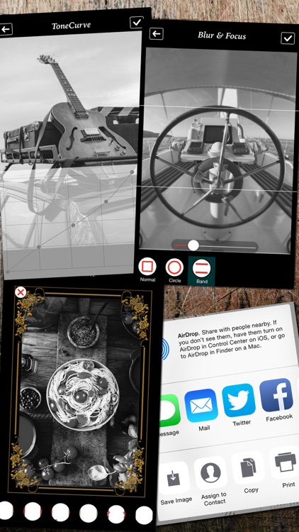Black and White Picture Camera screenshot-4
