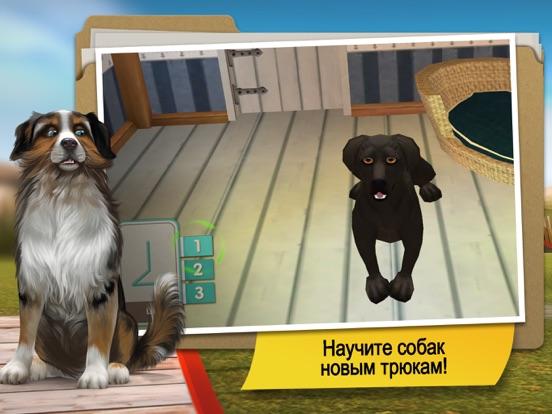 Скачать DogHotel Premium - Мой отель для лабрадоров