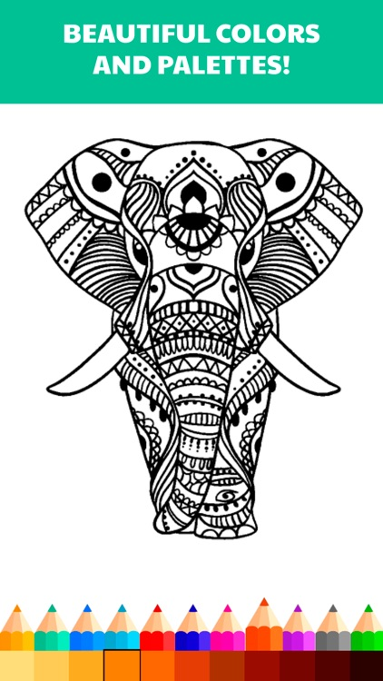 Color.ly Volume 1 - Adult coloring book (Animals, Basic, Celtic mosaic, Collage, Elephants, Floral, Geometric, Kids, Mandala, Oriental, Owls)