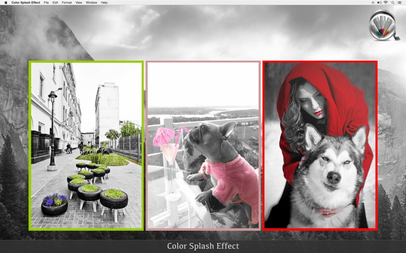 Color Splash Effect screenshot 5