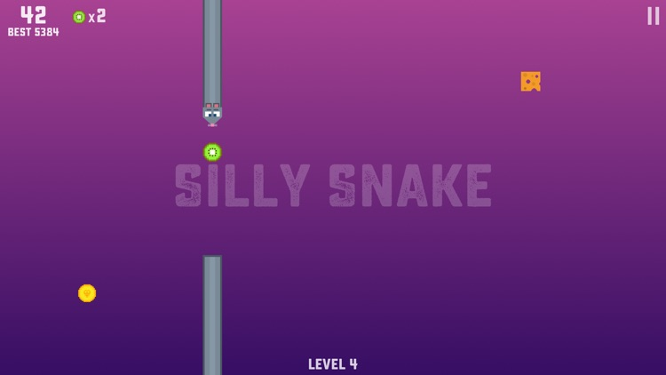 Silly Snake - Retro Arcade Snake