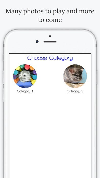 download Find the Difference in Chinchilla apps 4