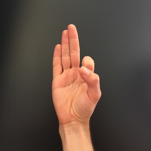 Spell: Learn the Sign Language Alphabet