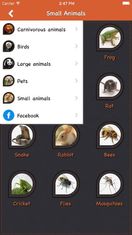 Animal Sound For Child