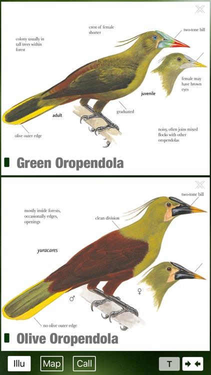 All Birds Ecuador - a complete field guide to all the bird species recorded in Ecuador screenshot-3