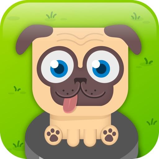 Pugs on pucks