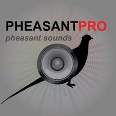 Activities of REAL Pheasant Calls - Pheasant Hunting Calls